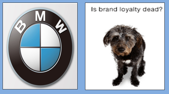 customer brand loyalty